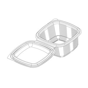 Hinged Flat Lid Containers (Vth)